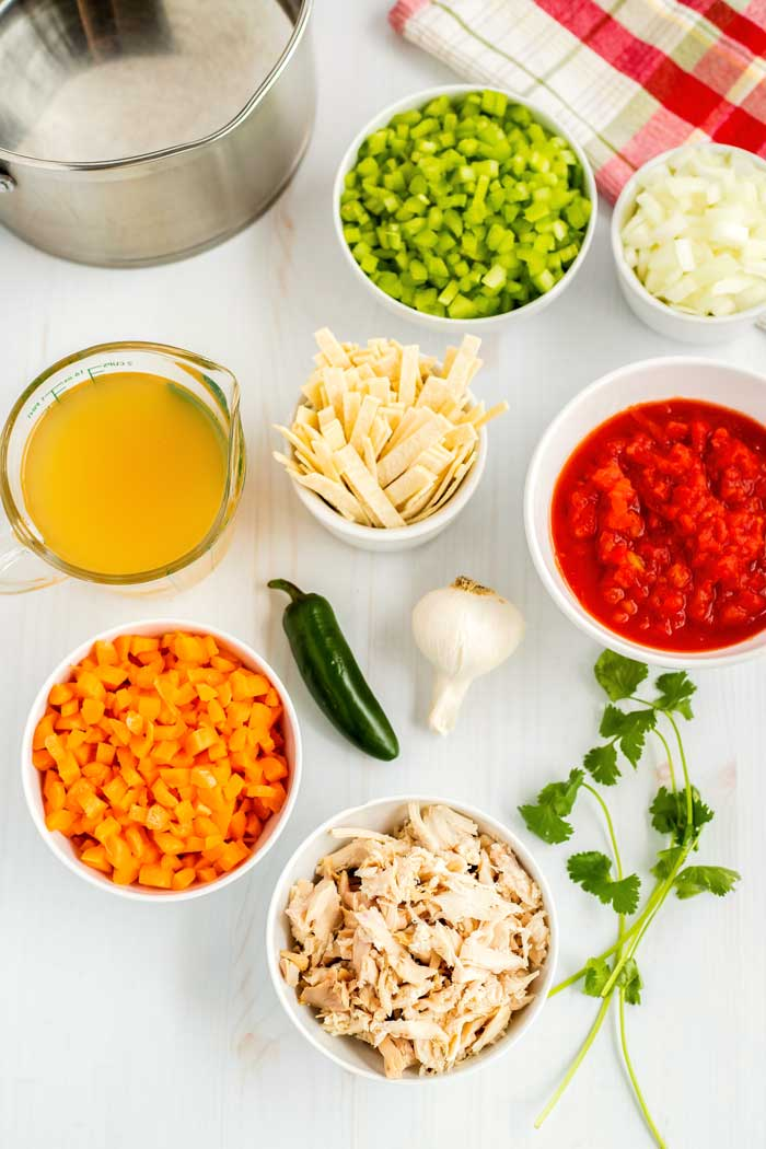 A picture of all of the ingredients needed to make chicken tortilla soup.