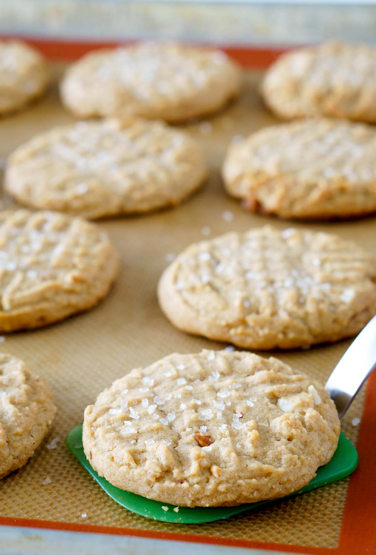Crisscrossed Peanut Butter Cookies