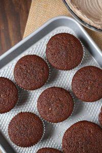 Plain Gingerbread Cupcakes