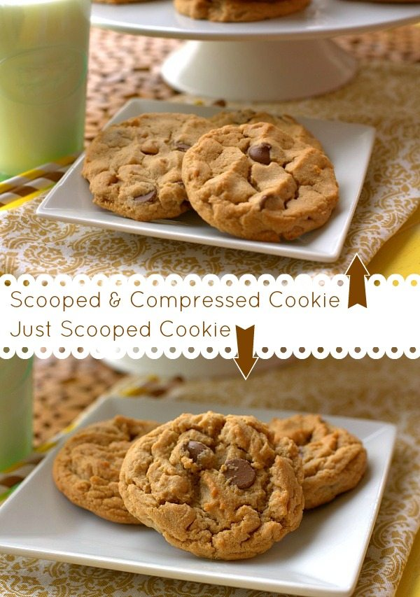 Scoop_Compressed_Cookie