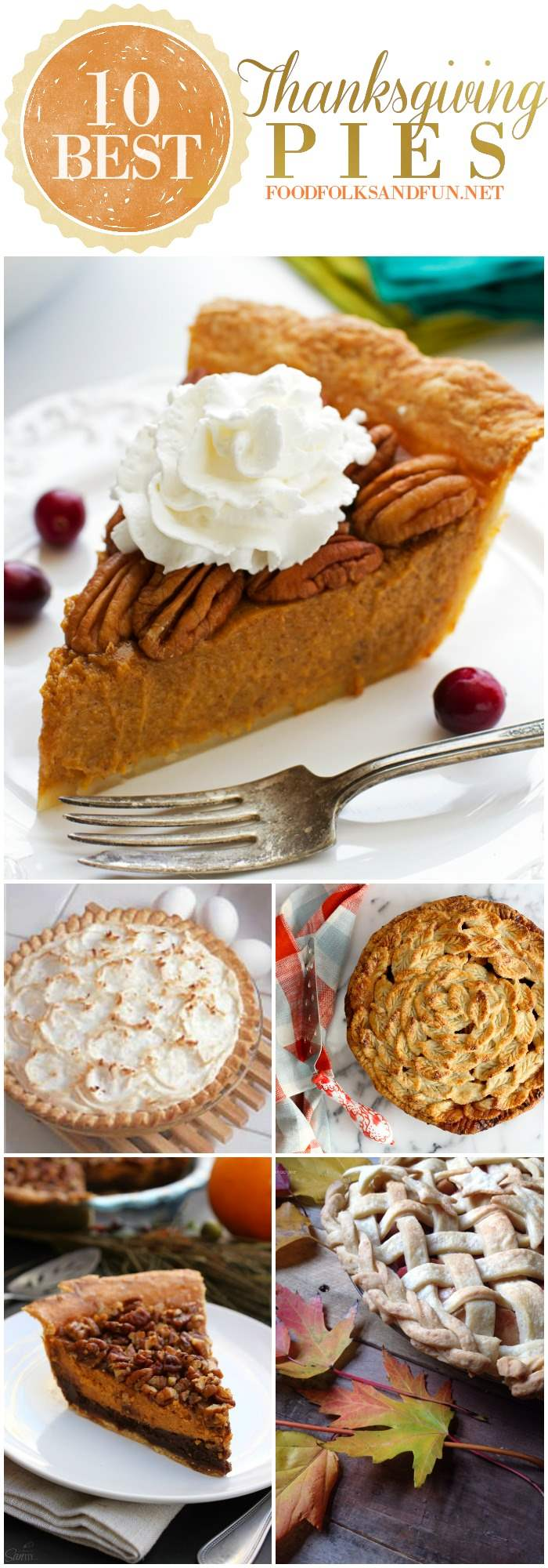 10 Best Thanksgiving Pie Recipes: This roundup has the best classic recipes plus some new and improved ones, too!
