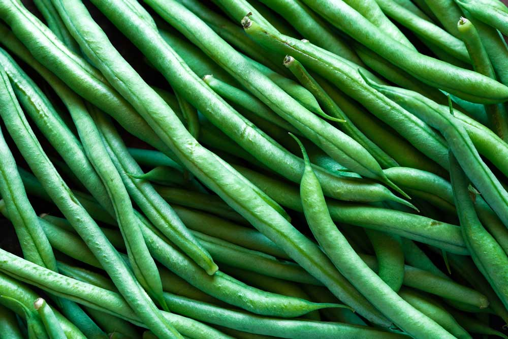 close up picture of uncooked green beans.