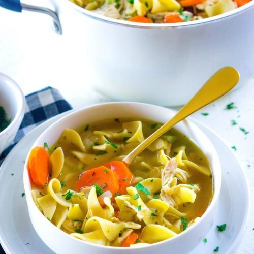 rotisserie chicken noodle soup • food folks and fun