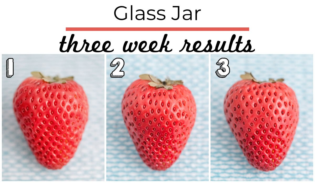 3 weeks worth of results from strawberries being stored in a glass jar.