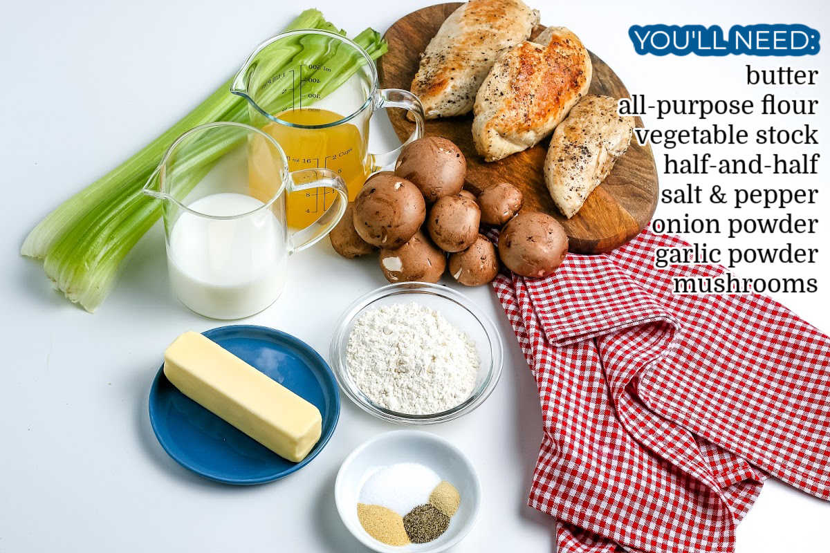 All of the ingredients needed to make Cream of Mushroom Soup Substitute recipe.