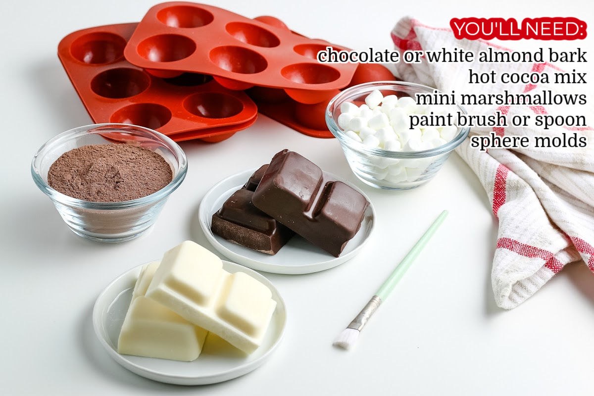 All of the ingredients needed to make How to Make Hot Chocolate Bombs.